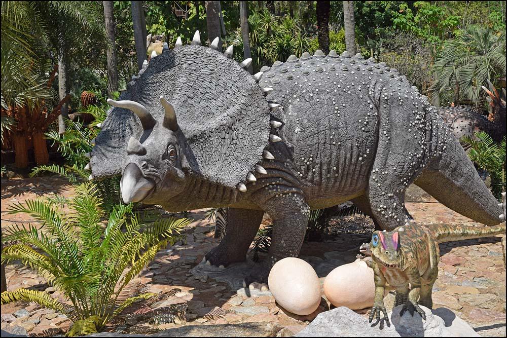 17-1442 Dinosaurie CBU.jpg