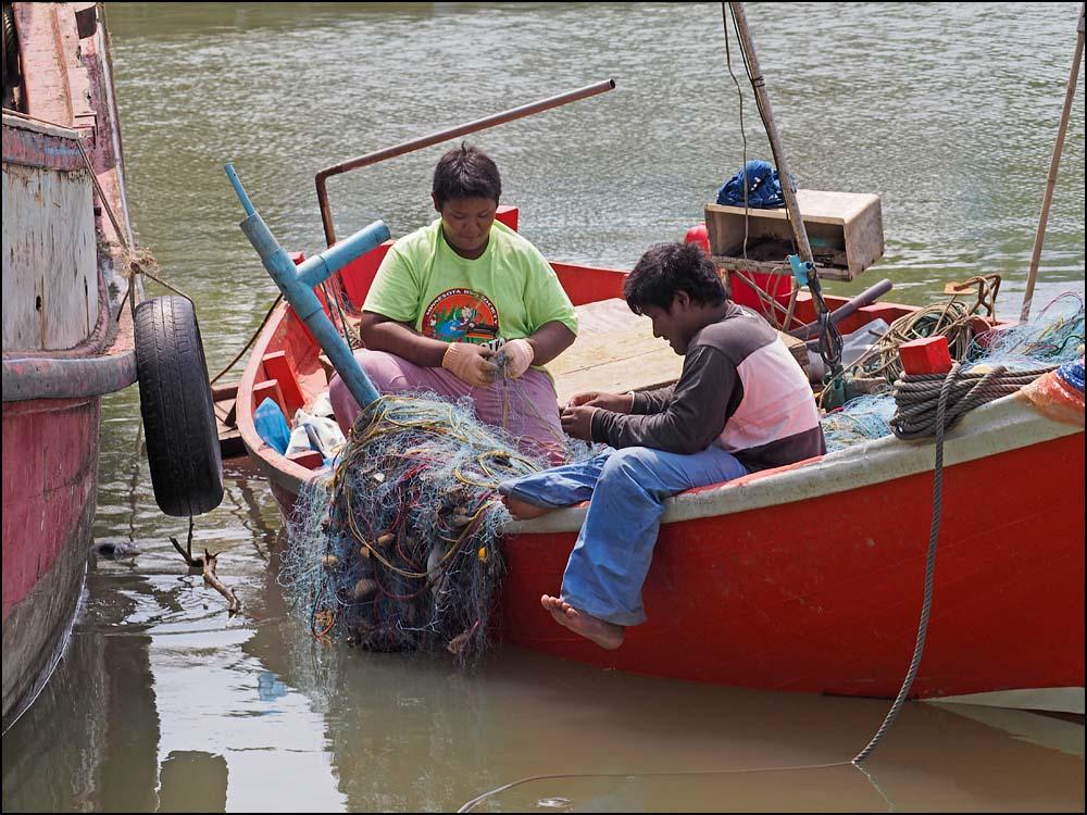 17-1493 Fiskare rensar nät CBU.jpg