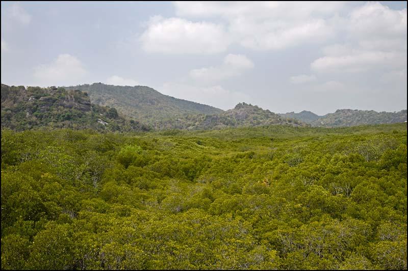 18-0439 Pranburi Forest Park PKK.jpg