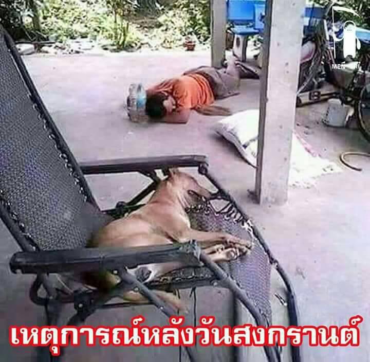 Dog vs. Man.jpg