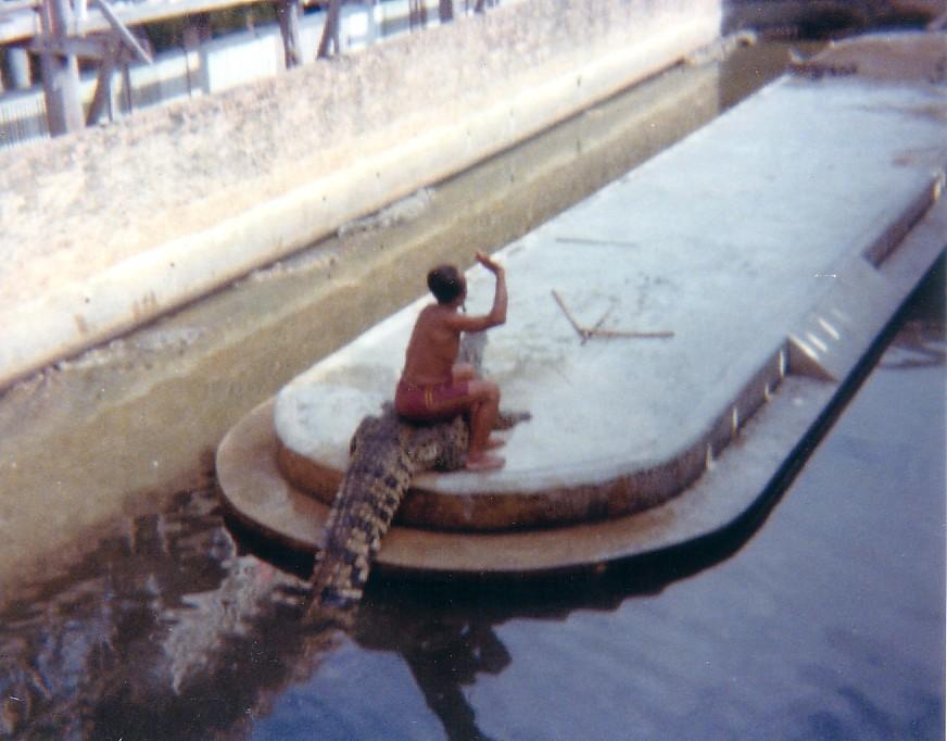 krokodil farmen (3).jpg